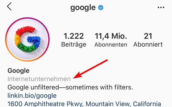 Instagram Profil Kategorie
